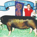 Overstake exhibits state grand champion