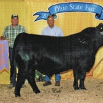 State fair Reserve Grand Champion