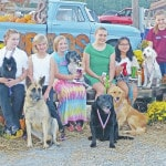 Dog obedience winners picked