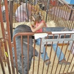 Scenes from the 2015 Highland County Fair