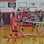 Lady Lions fall in extra set