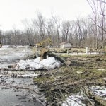300-500 trees cut at Rocky Fork