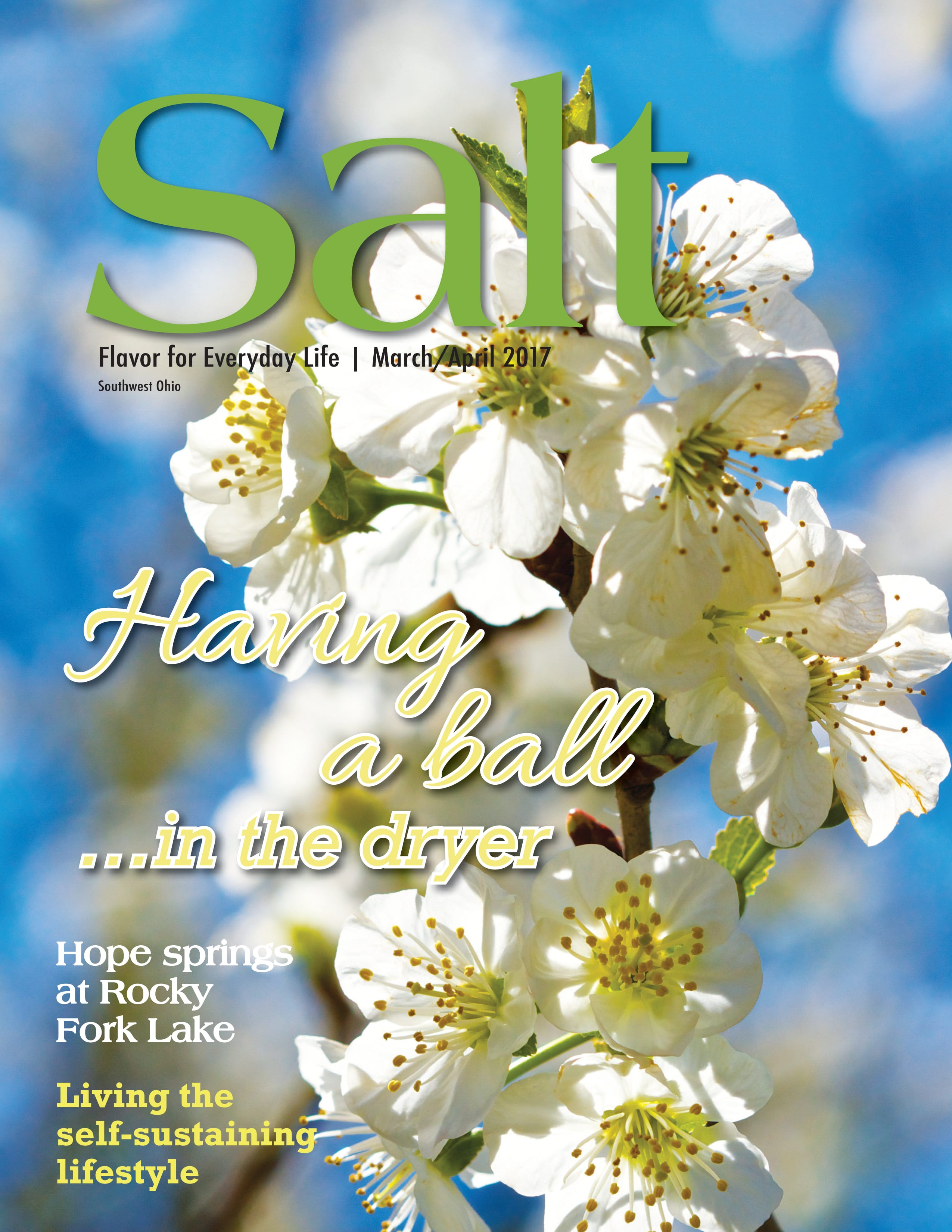 Salt: March/April 2017