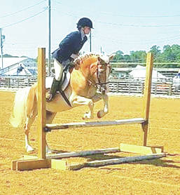 Journey Abbott clears an obstacle on her horse during the Highland County Fair.