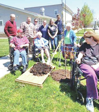 Hearth & Care residents and staff members pitch in with village of Greenfield representatives to help plant a tree along South Street on Arbor Day.