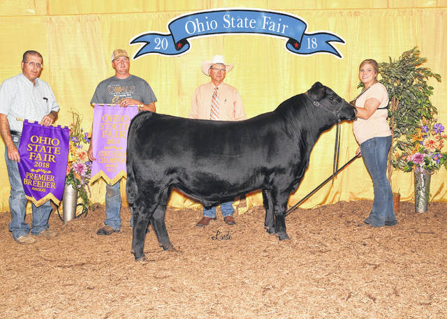 Maplecrest Insider won Reserve Grand Champion Bull at the 2018 Ohio State Fair Angus Show, July 28 in Columbus. Lauren Grimes, of Hillsboro, owns the October 2017 son of PVF Insight 0129. Jeff Bedwell, Isabell, Okla., evaluated the 92 entries.