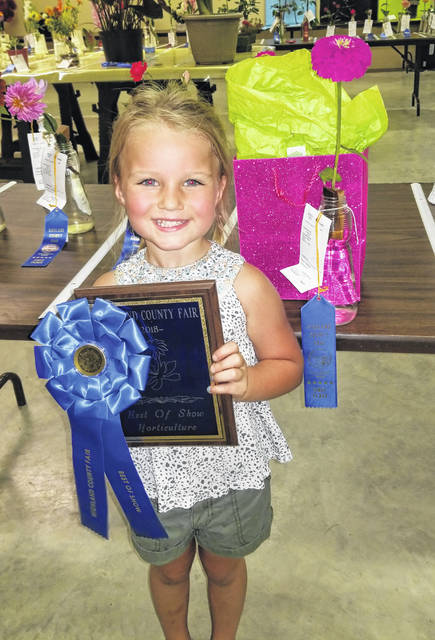 Gracie Rayburn won the Horticulture Outstanding Award in the Youth Floral Show at the 2018 Highland County Fair.